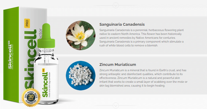 Skincell Pro Ingredients