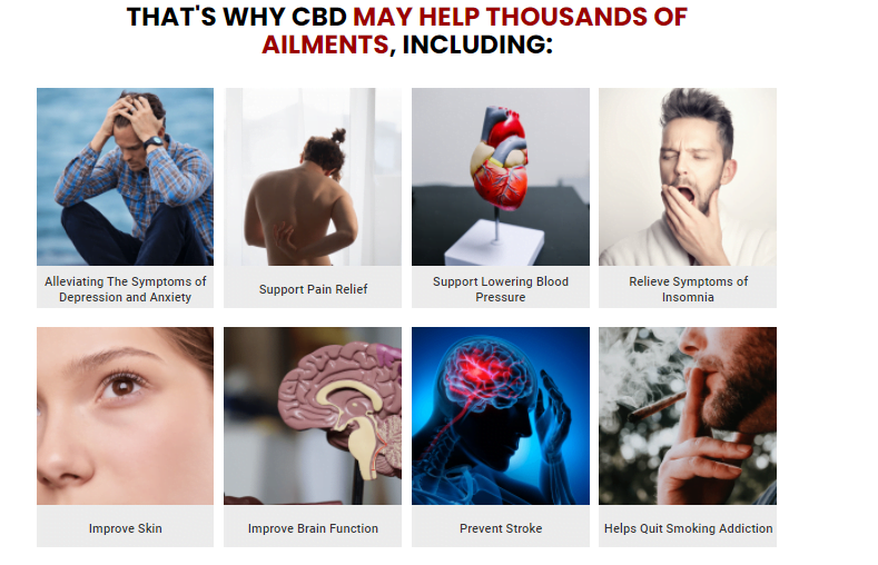 That's Why Smilz CBD Gummies May Help Thousands Of Ailments.
